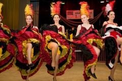 I. ples města Vizovice/ Vizovice Town Ball
